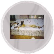 Great Dane And Calico Cat Round Beach Towel