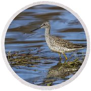Greater Yellowlegs Round Beach Towel