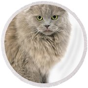 Highland Fold Lilac Self Round Beach Towel