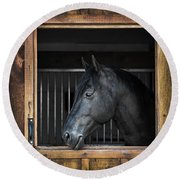 Horse In Stable Round Beach Towel