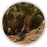 Indian Canyon Round Beach Towel