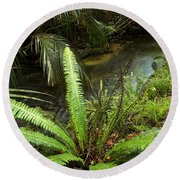 Jungle Stream Round Beach Towel by Les Cunliffe