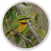 Little Bee-eater Round Beach Towel