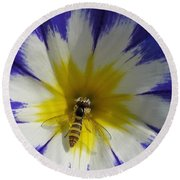 Morning Glory Named Royal Ensign Round Beach Towel