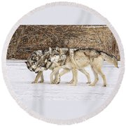 3 Pack Round Beach Towel
