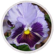 Pansy From The Chalon Supreme Primed Mix Round Beach Towel
