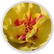 Portulaca Named Happy Hour Banana Round Beach Towel