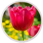 Red Tulips On The Green Background Round Beach Towel