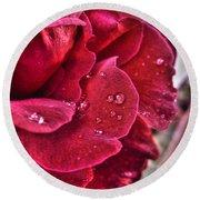 Red Rose And Summer Rain Round Beach Towel