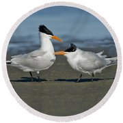 Royal Terns Round Beach Towel
