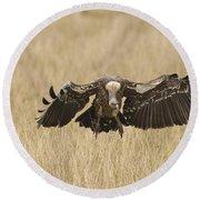 Ruppells Vulture Round Beach Towel