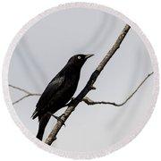 Rusty Blackbird Round Beach Towel