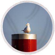 Seagull Perched On Red Column Round Beach Towel