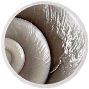 Seashell Detail Round Beach Towel by Elena Elisseeva