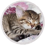Sleeping Kitten Round Beach Towel
