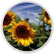 3 Sunflowers Round Beach Towel