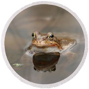 Toad Round Beach Towel