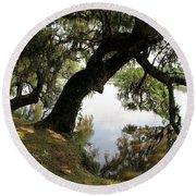 Tree  Reflection Round Beach Towel
