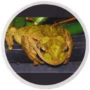 Treefrog Round Beach Towel