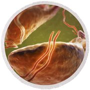 Trichomonas Vaginalis Round Beach Towel