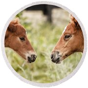 Two Colts Round Beach Towel