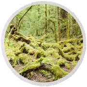 Virgin Rainforest Wilderness Of Fiordland Np Nz Round Beach Towel