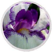 White And Purple Iris 2 Round Beach Towel