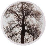 Winter Tree In Fog Round Beach Towel