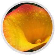 Zantedeschia Named Flame Round Beach Towel