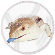 Australian Reptiles On White Round Beach Towel