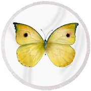 32 Dercas Lycorias Butterfly Round Beach Towel