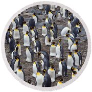 King Penguins Round Beach Towel