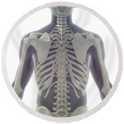 Bones Of The Upper Body Round Beach Towel