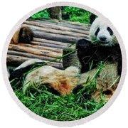 3722-panda -  Acanthus Sl Round Beach Towel