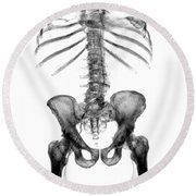 3d Skeletal Reconstruction Round Beach Towel