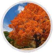 A Blanket Of Fall Colors Round Beach Towel