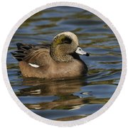 American Widgeon Round Beach Towel