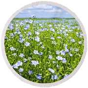 Blooming Flax Field Round Beach Towel