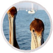 California Pelicans Round Beach Towel