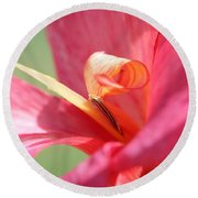 Dwarf Canna Lily Named Shining Pink Round Beach Towel