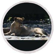 Female Lion Round Beach Towel