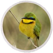 Little Bee-eater Round Beach Towel
