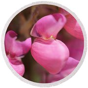 Lupine Named Gallery Pink Round Beach Towel