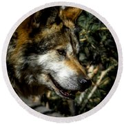Mexican Grey Wolf Round Beach Towel