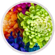 Multicolored Chrysanthemums  Round Beach Towel