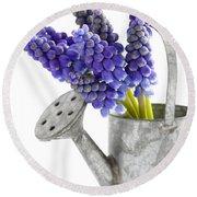 Muscari Or Grape Hyacinth Round Beach Towel