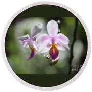 Orchids Dance Round Beach Towel