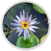 Purple Lotus Round Beach Towel
