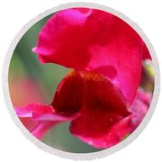 Snapdragon Named Red Chimes Round Beach Towel