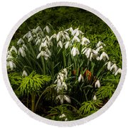 Snowdrop Woods Round Beach Towel